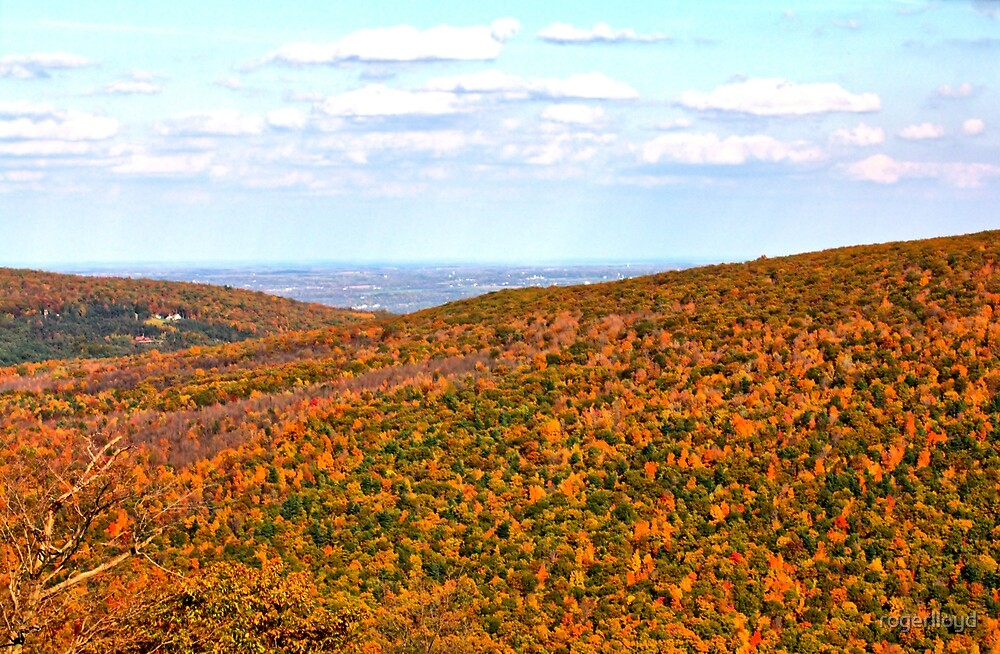 View from atop Bristol Mountain, NY by rogerlloyd