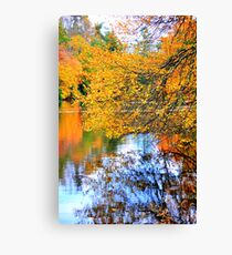 Connemara Pond Canvas Print