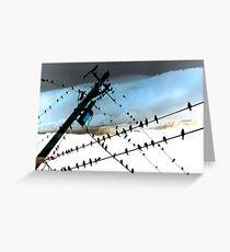 Bird Life ~ A series: cross communication Greeting Card