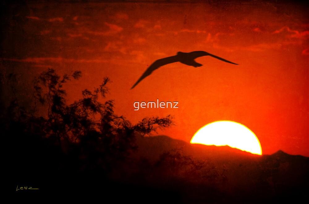 Homeward Bound by George Lenz