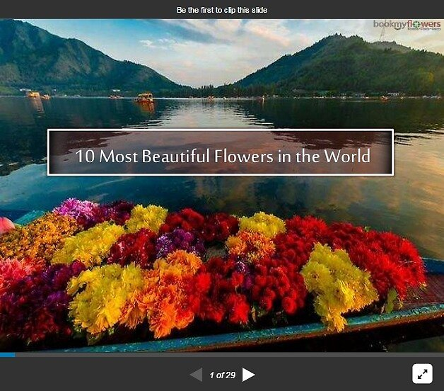 10 Most Beautiful Flowers in the World by best-flowers