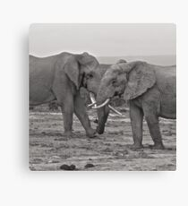 Number 1 & 2 Canvas Print