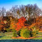 Fall Landscape in Indiana by David Owens