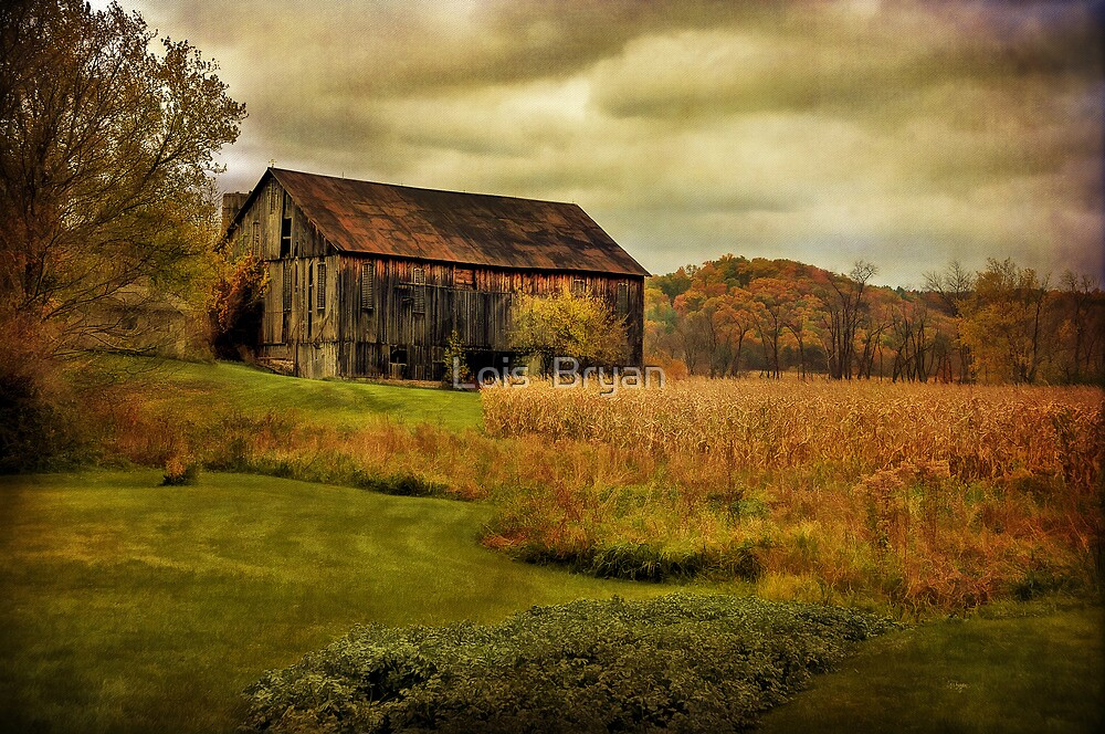Old Barn in October by Lois  Bryan