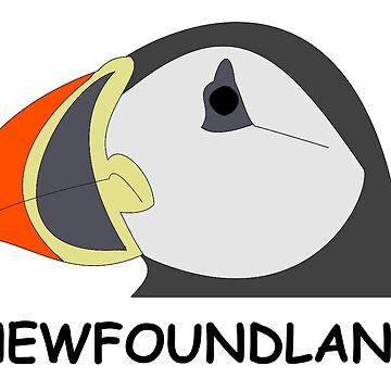 Newfoundland Puffin by DerBen