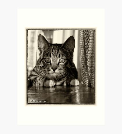 Keeping a watch on you .. Art Print