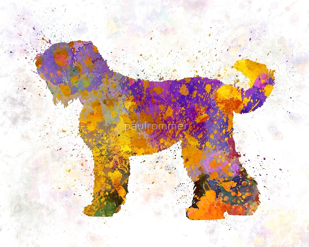 Russian Black Terrier in watercolor by paulrommer