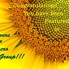 Feature Banner by Susan Blevins