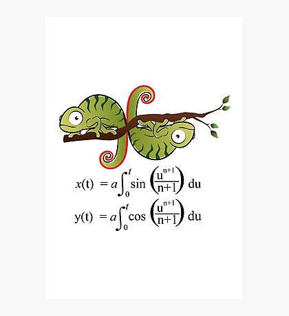 Euler Spiral Photographic Print