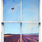 Window Art 4 - Lavender Field by Michael Murray