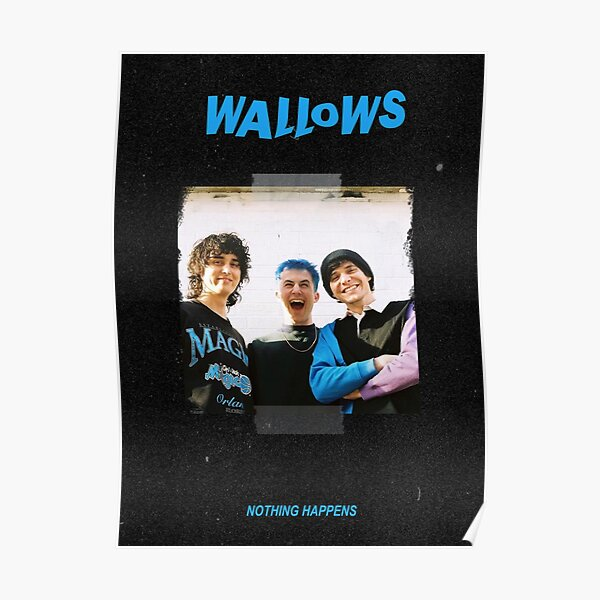 Banda de Wallows Póster