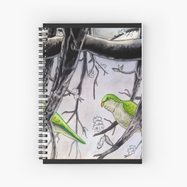 Stereogram challenge of Lorenzo the parakeet, Ibiza Spiral Notebook