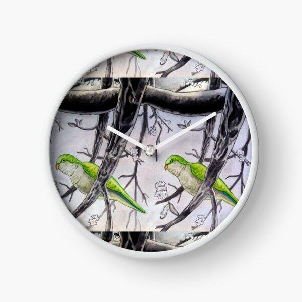 Stereogram challenge of Lorenzo the parakeet, Ibiza Clock