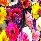 Flowers iPhone Case by Ronald Hannah