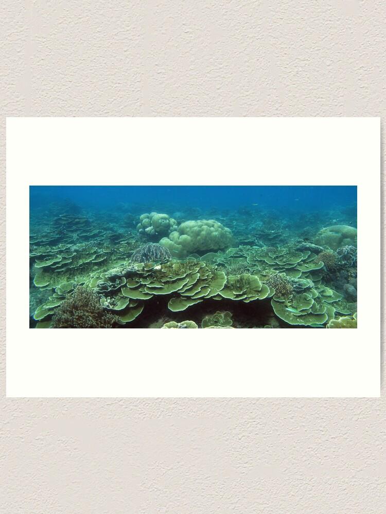 Alternate view of Reef at Pulau Pisang Art Print