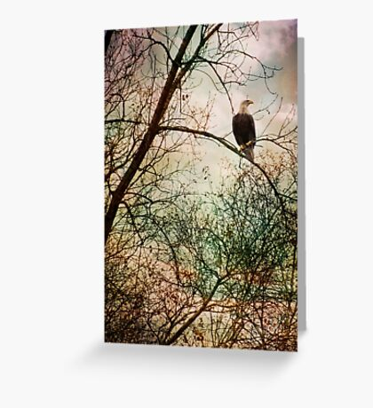 Perched and Alert Greeting Card