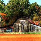 Another Old Barn by Chelei