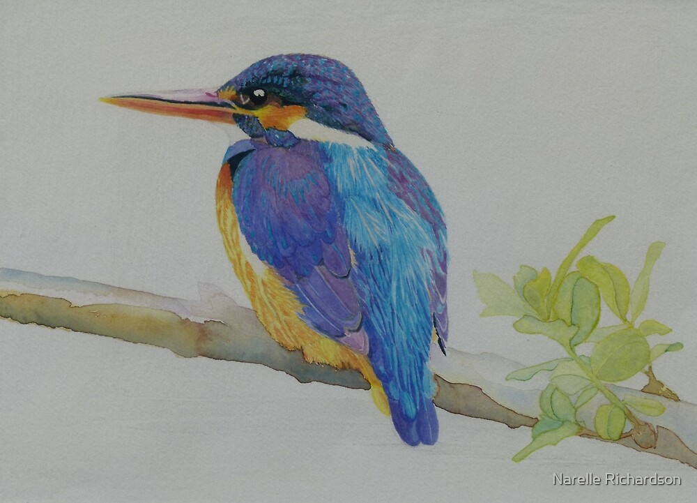 Kingfisher by Narelle Richardson
