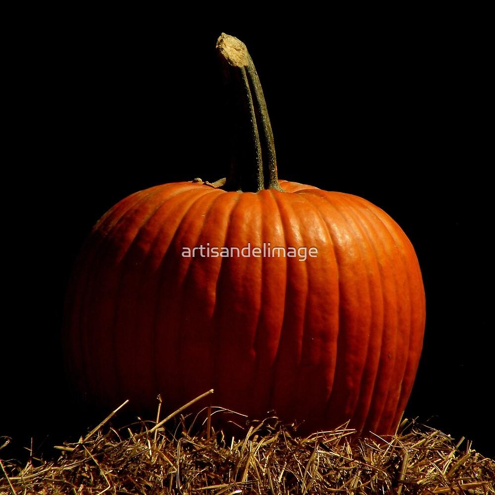 Pumpkin Extravaganza ~ Part Three by artisandelimage