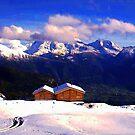 """""""Chalet - Zurich, Switzerland"""" by Michelle Lee Willsmore"""