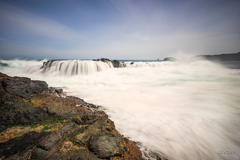 Bushrangers Bay, Cape Schanck by Silvia Tomarchio