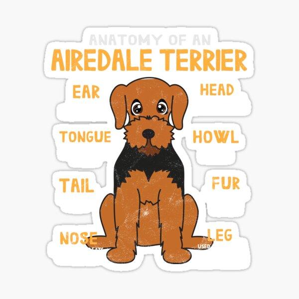 Anatomy of Airdale Terrier Dog Sticker
