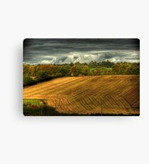 Last day of the harvest Canvas Print