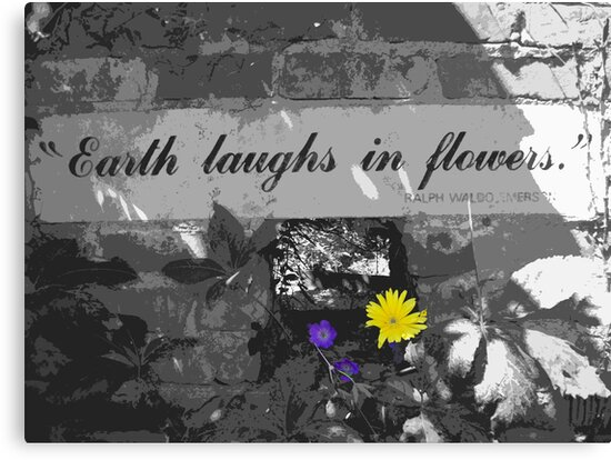 Earth Laughs In Flowers by Mary Ann Battle