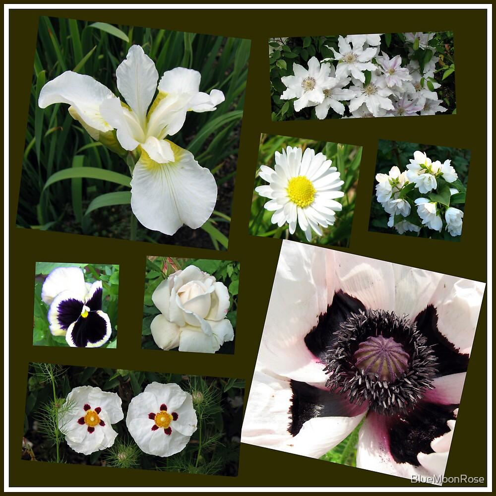 White Summer Flowers Collage von BlueMoonRose