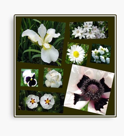 White Summer Flowers Collage Leinwanddruck