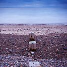 Findhorn Beach by Christopher Thomson