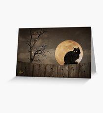 Cat On A Fence Grußkarte