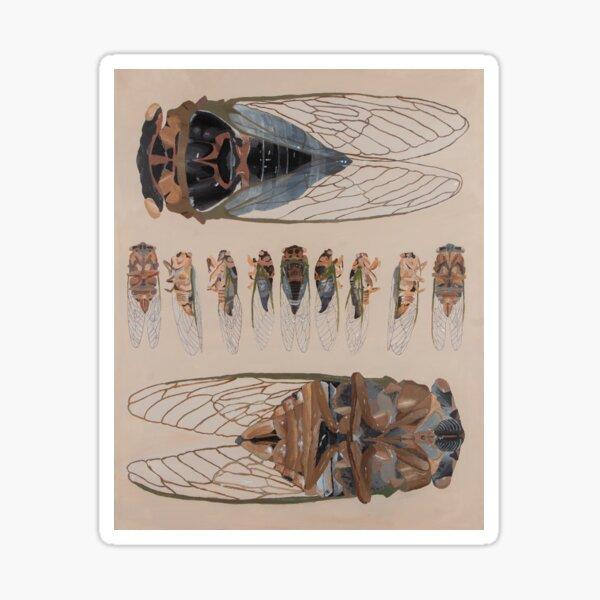 Cicadas Sticker