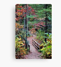 Sandburg Trail Canvas Print