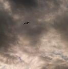 Flight into Darkness by Odille Esmonde-Morgan