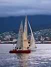 Tasmania - Returning to Harbour by Odille Esmonde-Morgan
