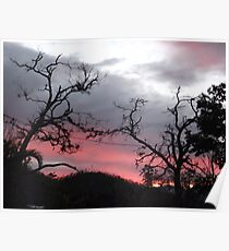 Sunset near Cardwell, North Queensland Poster