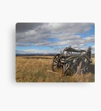 Old Buggy Metal Print