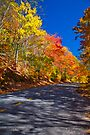 Fall Colors along the Blue Ridge Parkway by photosbyflood