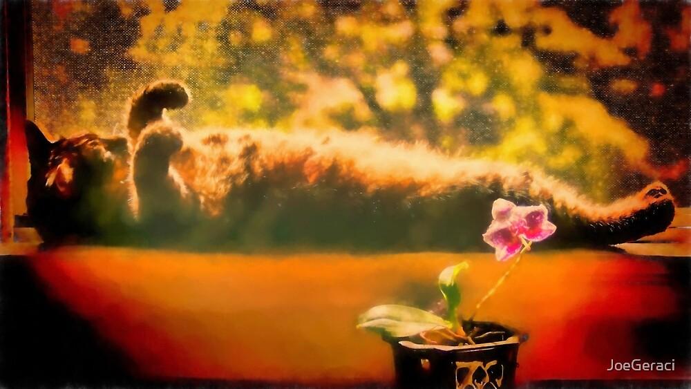 Sun Lover by JoeGeraci