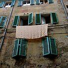Laundry, Siena, Italy by Barbara Wyeth