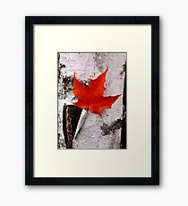 Fall! Framed Print