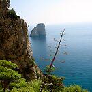 Capri, Italy by Barbara Wyeth