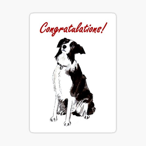 Devotion - Border Collie - Congratulations Card Sticker