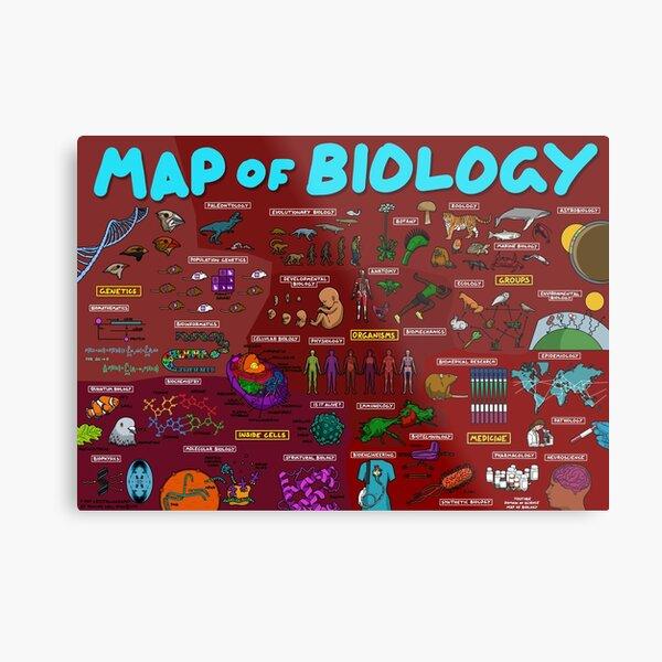 Map of Biology Metal Print