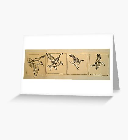 Four flying Seagulls: pen sketch. Greeting Card