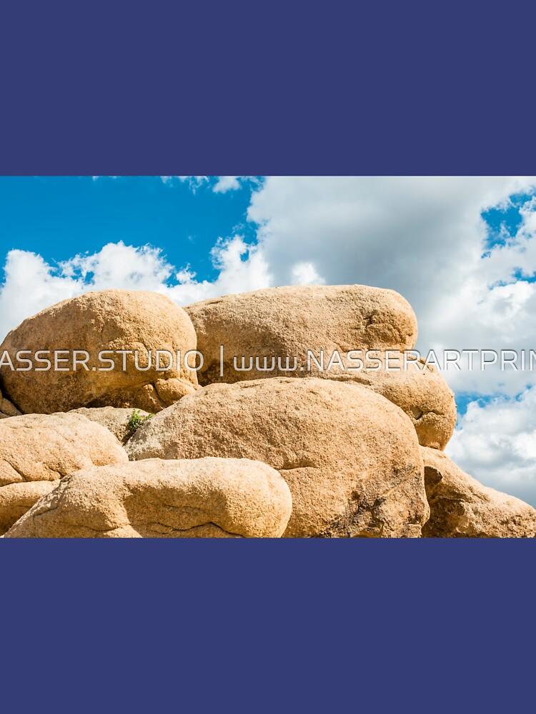 Big Rock Joshua Tree 7445 by neptuneimages