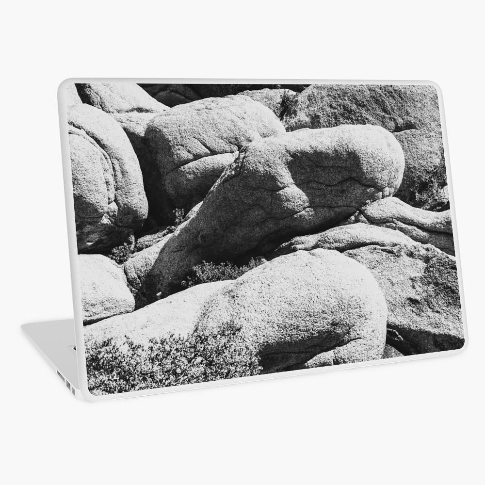 Big Rock Joshua Tree 7444 Laptop Skin