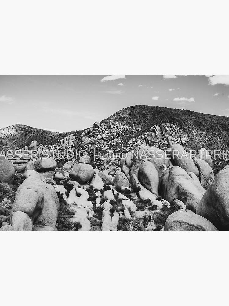 Big Rock Joshua Tree 7414 by neptuneimages