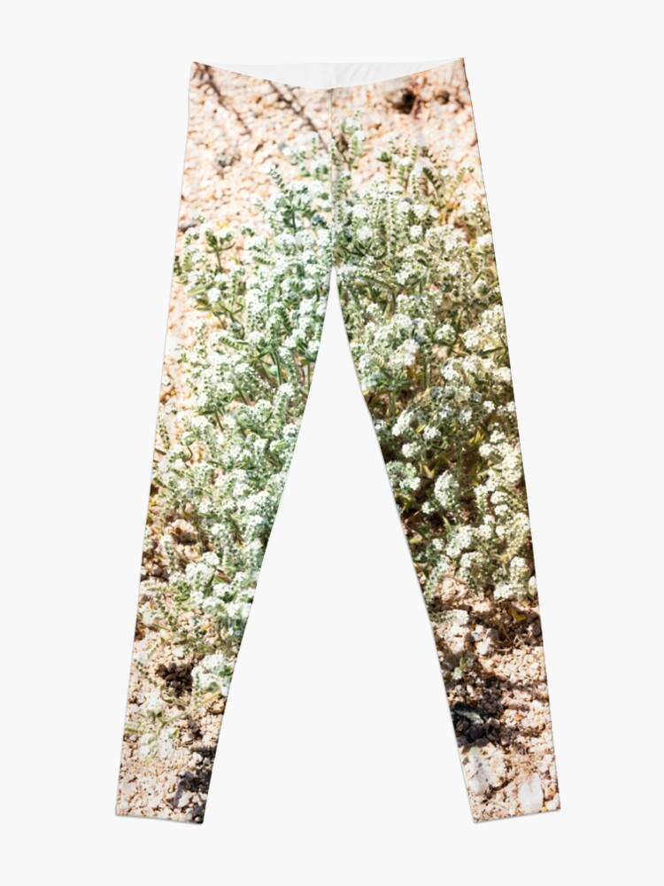 Alternate view of Super Bloom Paradise Joshua Tree 7313 Leggings